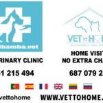 tierarzt-vet-veterinary-mijas-marbella-butibamba